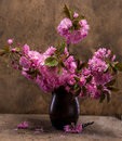 Sakura in a vase on wooden background Stock Photography