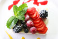 Salad of berries with sugar powder Stock Images