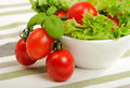 Salad Bowl Stock Image