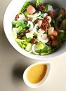 Salad in bowl with dressing Stock Images