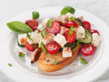 Salad on bread vegetable with cheese and chicken selective focus Stock Photos