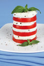 Salad caprese with alhabaca on white plate Royalty Free Stock Images
