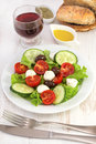 Salad with cheese mozzarella on the plate Royalty Free Stock Photo