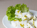 Salad with cheese and spice healthy cottage Royalty Free Stock Photography