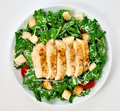 Salad with chicken Stock Photography