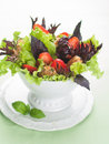 Salad with chicken and strawberry selective focus Royalty Free Stock Image