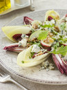 Salad of Chicory Walnuts and Apple Royalty Free Stock Images