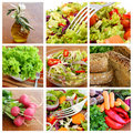 Salad - collage Royalty Free Stock Photo