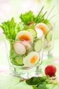 Salad with cucumber,radish and egg Royalty Free Stock Photo
