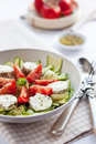 Salad with cucumber, tomatoes and goat cheese Royalty Free Stock Photography