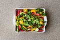Salad with dill, yellow pepper, red pepper, parsley, tomato and cucumber in white bowl. Royalty Free Stock Photo