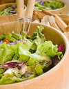 Salad fresh and healthy Royalty Free Stock Image