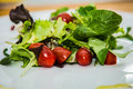 Salad with fresh vegetables on the plate Royalty Free Stock Photo
