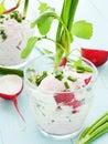 Salad glasses with radish cottage cheese shallow dof Stock Image