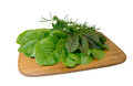 Salad greens assortment of on wooden chopping board Royalty Free Stock Photo