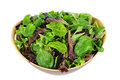 Salad Greens in Wood Bowl Royalty Free Stock Photos