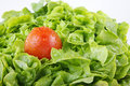 Salad healthy green with tomato Stock Photo