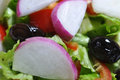 Salad high quality vegetables photo Royalty Free Stock Image