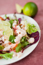 Salad with king prawns fresh vegetables tomatoes beetroots decorated slices of lemon presented on a white plate Royalty Free Stock Photo
