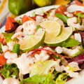 Salad with king prawns fresh vegetables tomatoes beetroots decorated slices of lemon presented on a white plate Stock Images