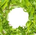 Salad Leaves Frame On White Ba...