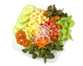 Salad with lettuce and other fresh vegetable on white dish Royalty Free Stock Photo