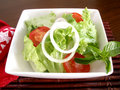 Salad of lettuce and tomato Royalty Free Stock Photo