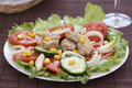 Salad with lettuce tomato cucumber onion Royalty Free Stock Photo