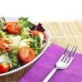 Salad lunch with tomato and cheese Royalty Free Stock Photos