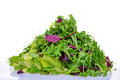 Salad mix with rucola frisee radicchio and lettuce Stock Images