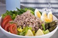 Salad Nicoise Stock Photography