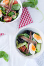Salad nicoise Royalty Free Stock Image