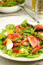 Salad nicoise with tomatoes green beans tuna eggs and anchovies dressed with vinaigrette Stock Images