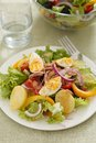 Salad nicoise tuna with eggs potatoes green beans tomatoes onions and black olives Royalty Free Stock Photography