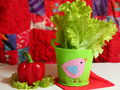 Salad and paprika in summer still life with patchwork quilt backgroune Stock Photography