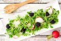 Salad with pea shoots, radishes, blackberries on a rectangular plate Royalty Free Stock Photo