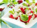 Salad plate with radish cottage cheese shallow dof Royalty Free Stock Photos