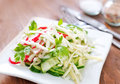 Salad with radish and cucumber Royalty Free Stock Photo