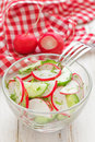 Salad with radish and cucumber fresh Royalty Free Stock Images