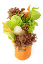 Salad roll on white background Royalty Free Stock Photography