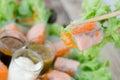 Salad Rolls Royalty Free Stock Photo