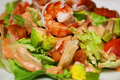 Salad with shrimp and avocado close up Stock Photography
