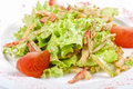 Salad of squid with roast chiken Royalty Free Stock Photo