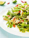 Salad with steamed sea bass fillet chili pepper rucola cilantro and ginger in olive and linseed oil shallow dof Stock Photos