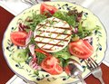 Salad of tomato, arugula, olives, cucumbers, pepper and toasted Royalty Free Stock Photo