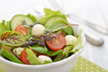Salad with tomato and mozzarella cheese mix different kinds of leaves in bowl on wooden background Stock Photography