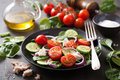 Salad with tomatoes cucumber and goat cheese Royalty Free Stock Photo