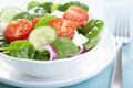 Salad with tomatoes cucumber and goat cheese cucumbers Stock Photography