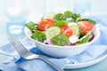Salad with tomatoes cucumber and goat cheese cucumbers Royalty Free Stock Photo