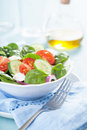 Salad with tomatoes cucumber and goat cheese fresh Royalty Free Stock Photos